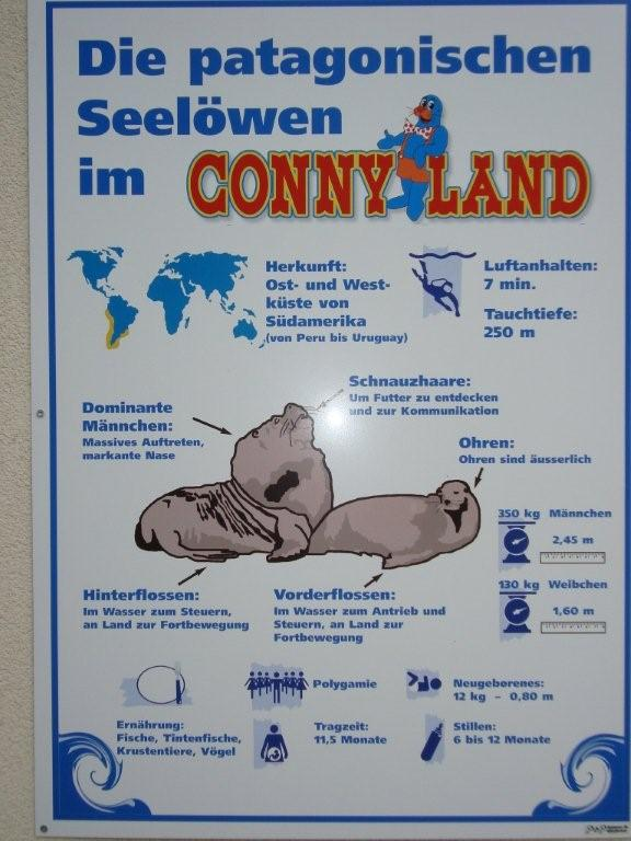 Conny Land
